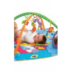 Palestrina Tiny Love Gymini Kick and Play online - Prezzo: 87.00 €